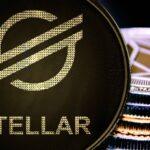 Stellar Organization Declares